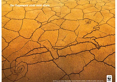 Ad of dry dessert landscape with lines on the soal showing an animal