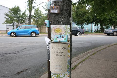 Local craft objects on poles in Halifax