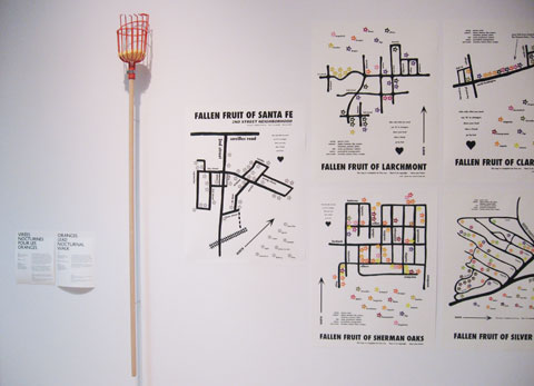 Exhibition wall featuring a city fruit project