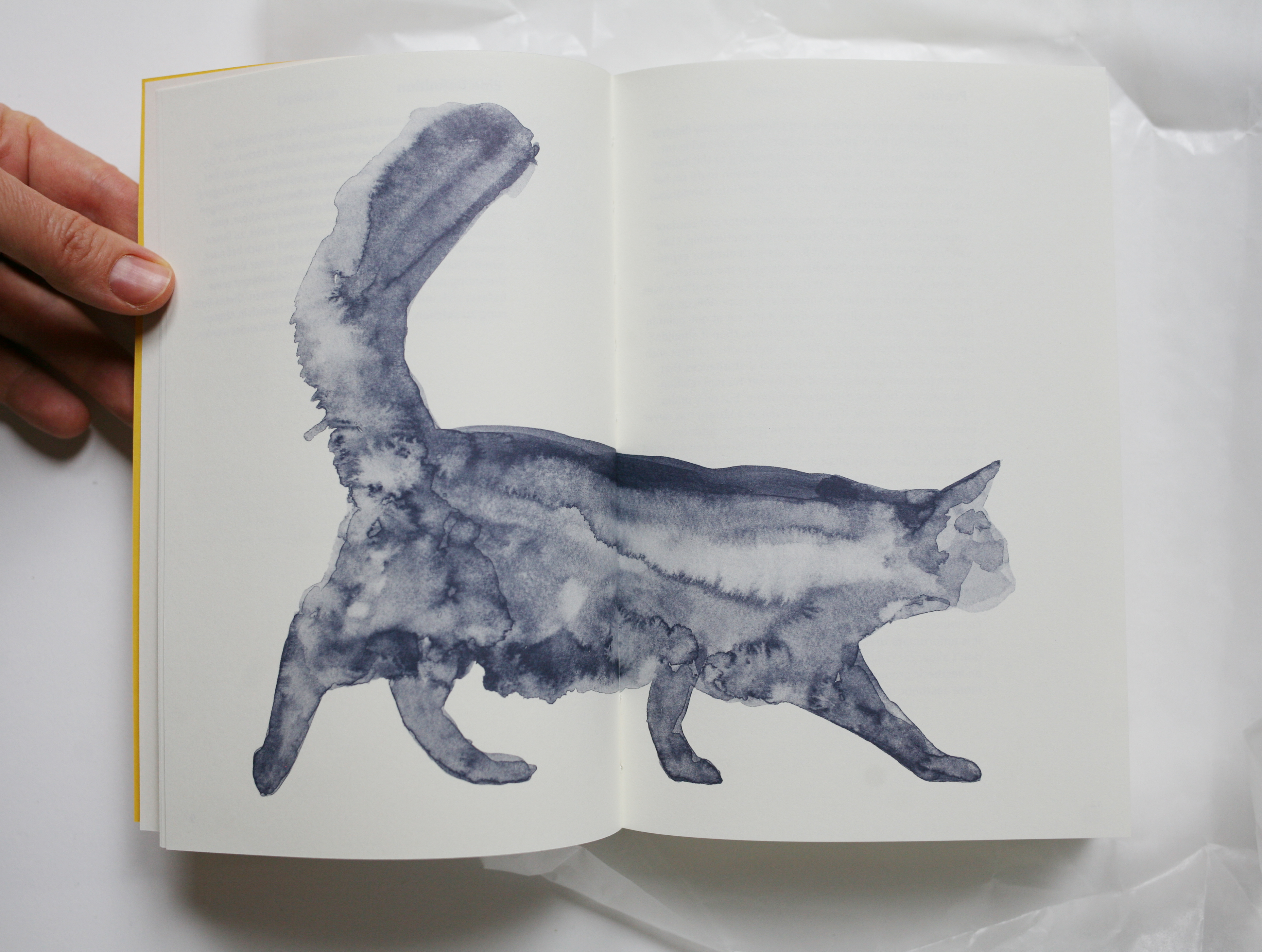 Swiss Cat Ladders Book with Watercolor Illustration of a Cat