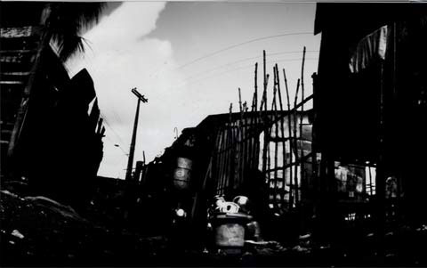 barracks and palm tree in slum area, from the pinhole photography project 'Favela - Ilha de Deus Pinhole'