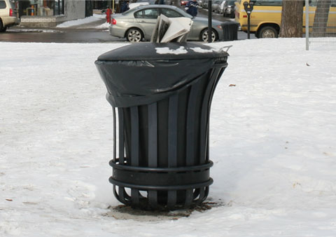 Content of Garbage Can in Parc Baldwin on Avenue du Mont-Royal E