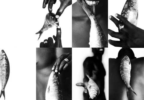 6 images of a black male and a fish which are part of the photography portrait project 'Senegal.Fish'