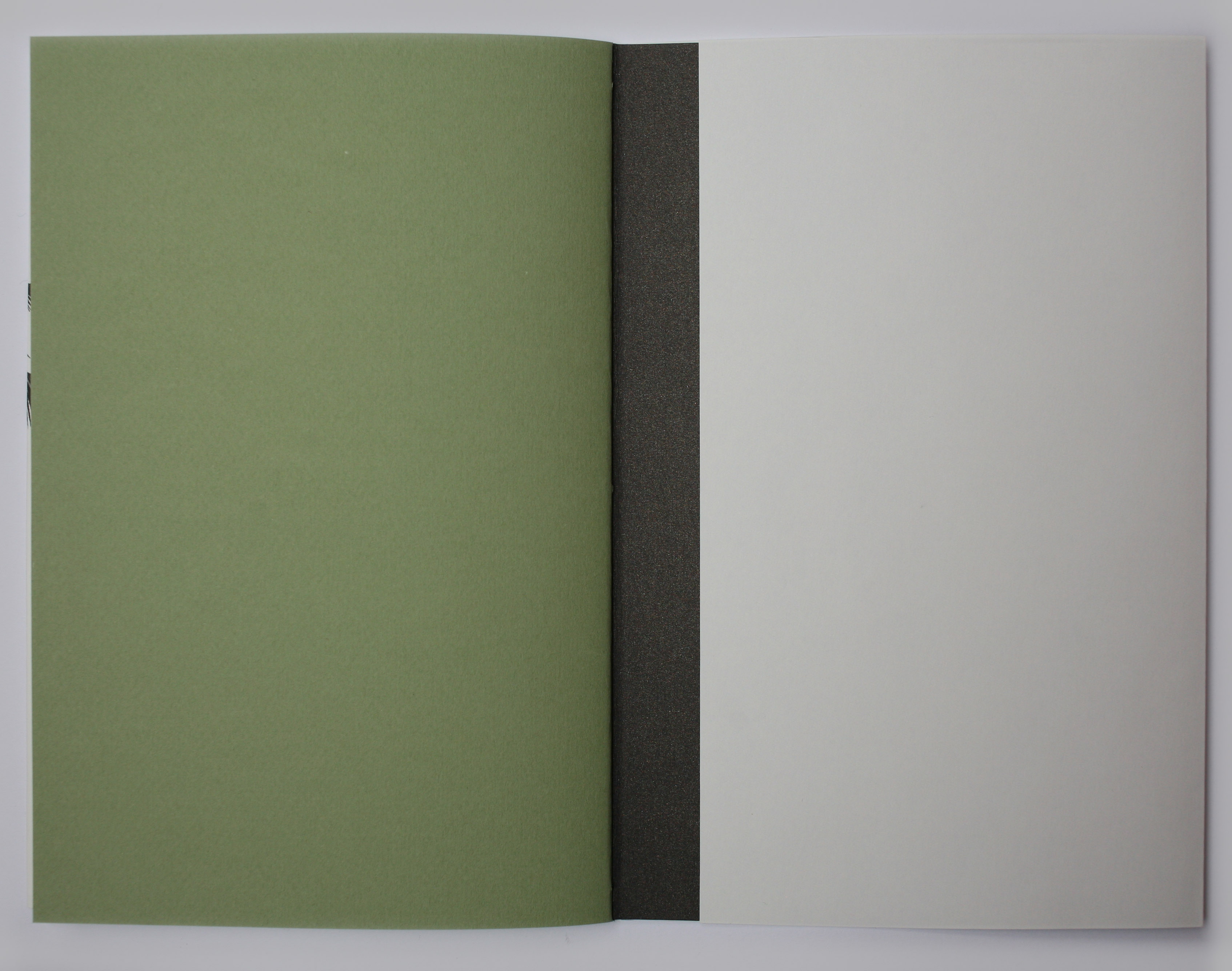 Book showing end paper and cover