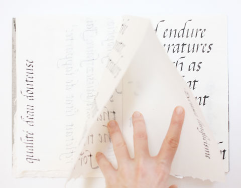 Page containing the word 'douteuse' of Montreal italic calligraphy book